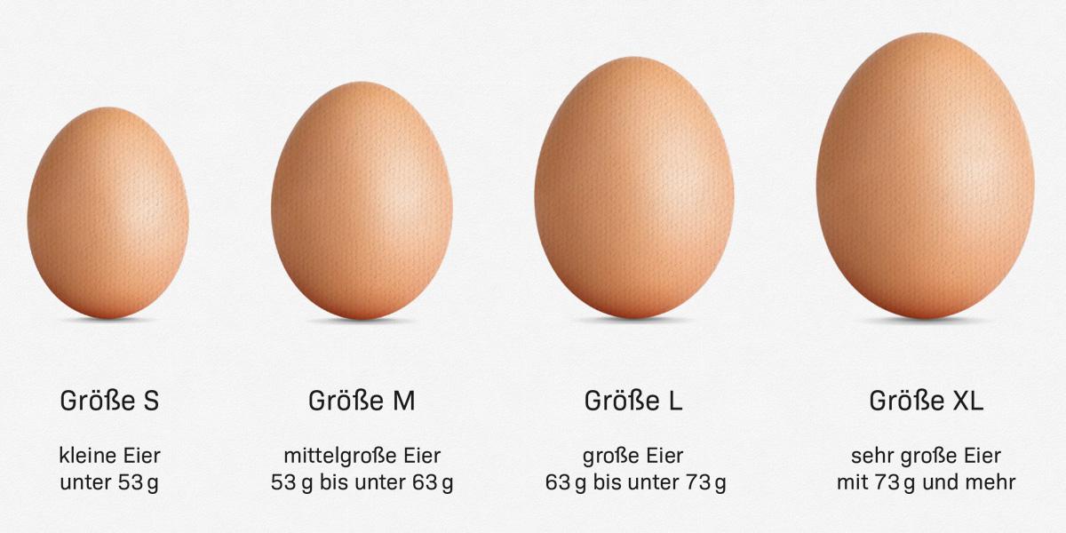 Eier Größenvergleich